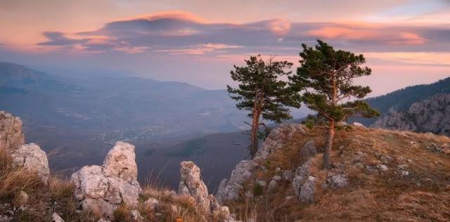Экскурсия в Крымский природный заповедник